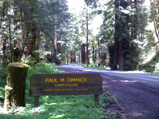 alt= Dimmick Campground in Navarro River Redwoods