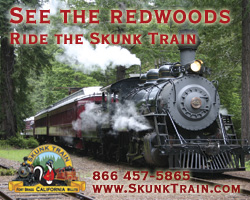 See the Redwoods -- Ride the Skunk Train
