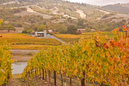 The winery and tasting room at Goldeneye, from up on the hill.