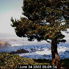 Webcam from Agate Cove