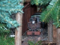 Train Layout at the Botanical Gardens #3