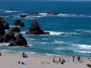 Jughandle State Reserve Beach in Fort Bragg, California