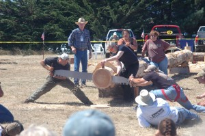 Logging Contest